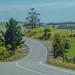Small photo of Sharp bend ahead ...NZ