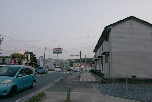 cocoskayanomori001