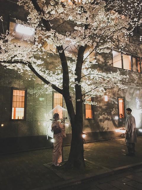 Gion 祇園. Kyoto