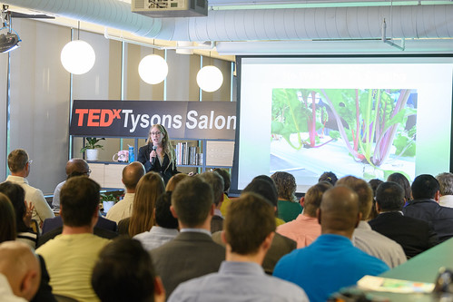 149-TEDxTysons-salon-20170419
