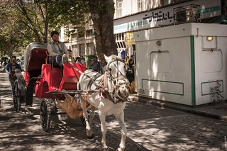 A cart with a horse
