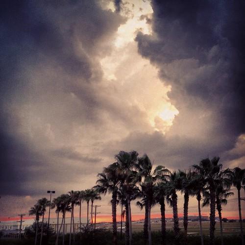 Weather (140/365) by elawgrrl