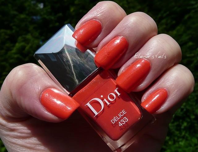 dior delice 3