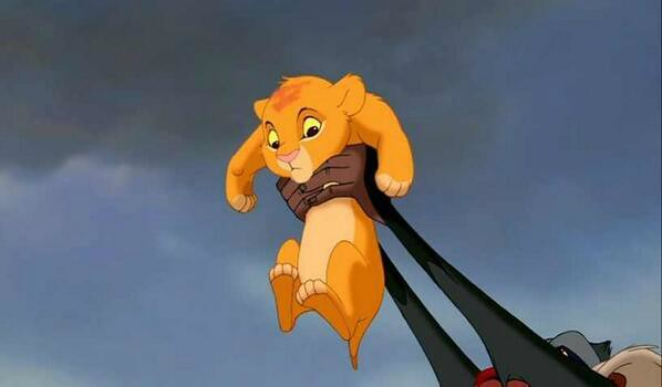 The royal baby known as Simba.