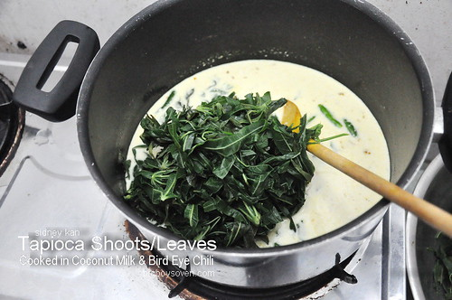 Tapioca Leaves Cooked in Coconut Milk 4