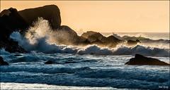 Beach sunrises