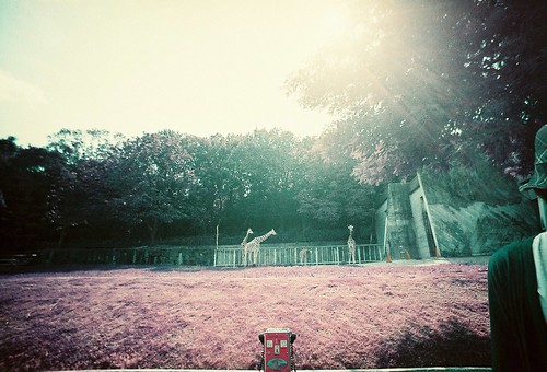 LomoChrome Purple ISO200