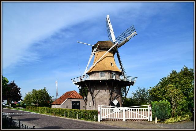 Niederlande / Provinz Fryslan / Noordwolde / Windlust / Baujahr: 1859