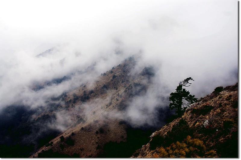 邁向雲峰途中 12