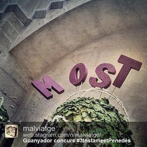 @malviatge guanyador del concurs fotogràfic del #3InstameetPenedès #Penedesfera #MostFestival