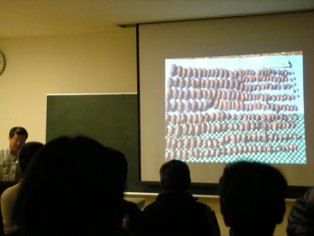 2年前に行ったカワシンジュガイの保護活動も紹介された.
