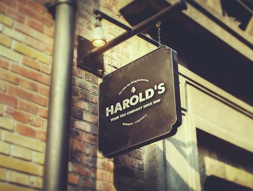 Identidad visual de Harold's, por Ángel Plaza