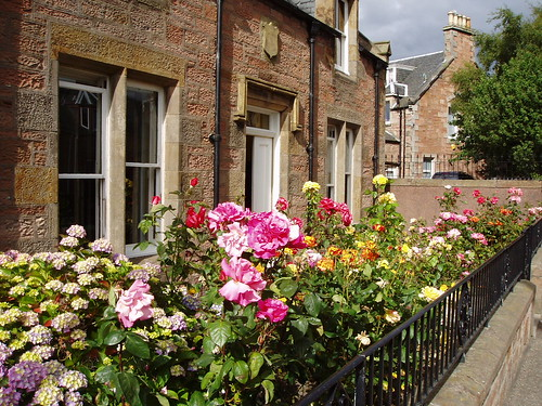Front garden in Inverness