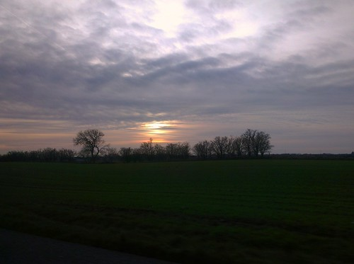 trees sunset nature beauty field grass denmark heaven skies