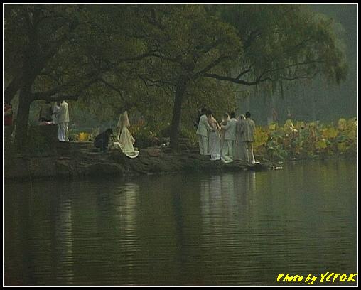 杭州 西湖 (其他景點) - 677 (北山路湖畔 孤山公園內 拍攝婚紗相)