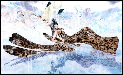 butterfly_reclining