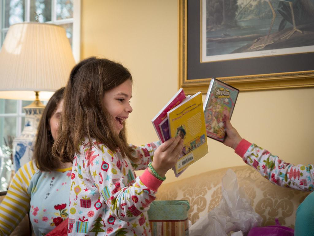 Princess Ponies books