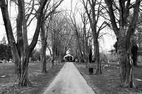anacortes fidalgoisland sanjuanislands skagitcounty skagit washingtonstate washington salishsea cemetery graveyard blackandwhite bw monochrome a266122photographyproduction grandviewcemetery