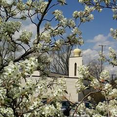 Spring is here...  . #springishere