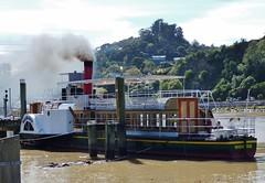 waimarie riverboat