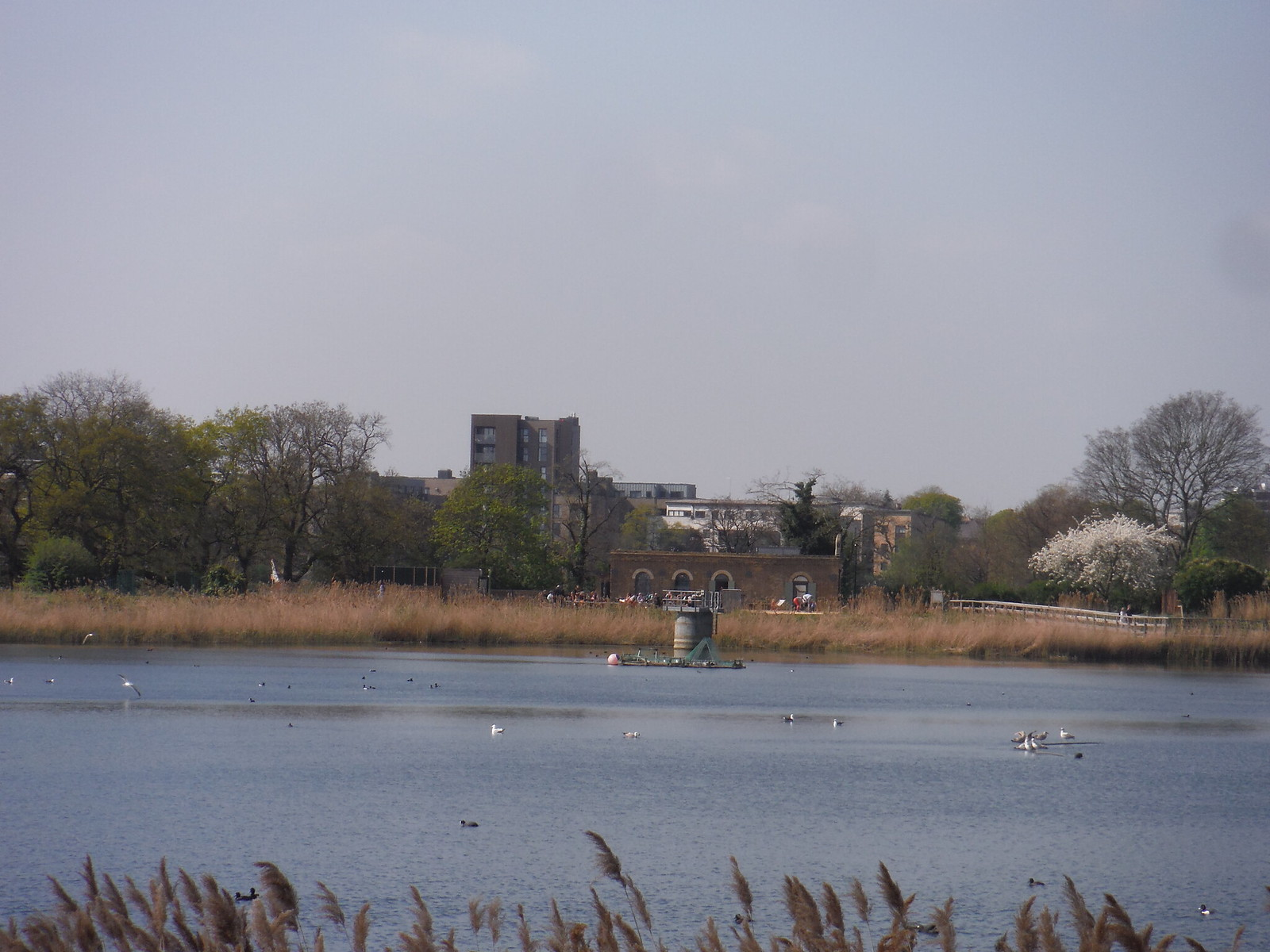 Coal House across the East Reservoir, Woodberry Wetlands SWC Short Walk 26 - Woodberry Wetlands (Stoke Newington Reservoirs)