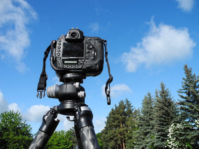 D4 Camera Strap