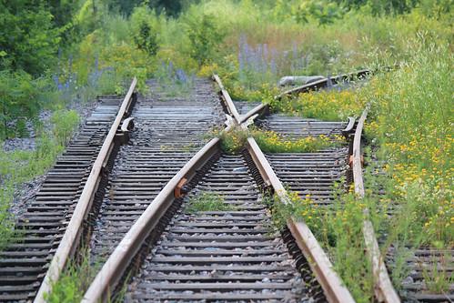 Trouver sa voie à la croisée des chemins 186/365