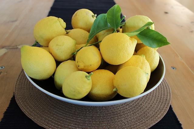 A Fresh Legacy Lemons