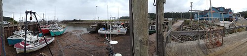 Bay of Fundy, not quite High Tide. Panorama