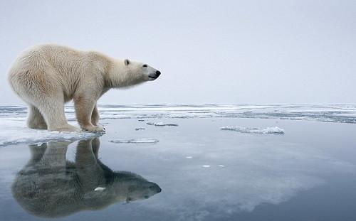 Охлаждение Тихого океана замедляет глобальное потепление