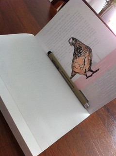 pigeon and book