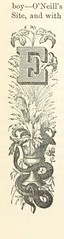 """British Library digitised image from page 431 of """"An Illustrated History of Ireland: from the earliest period. By M. F. C [i.e. Mary F. Cusack.] With historical illustrations by Henry Doyle"""""""