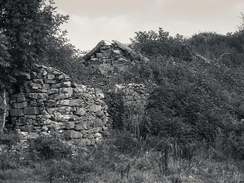Famine Cottage 2