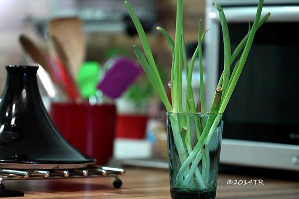 蔥花麵粉煎 & 水耕蔥-20140306