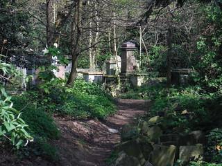 Abney Park Cemetery (III)