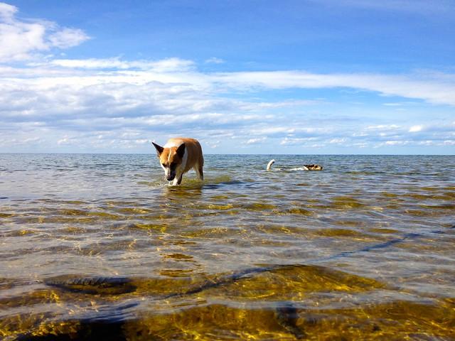 Washington Island, WI August 2012