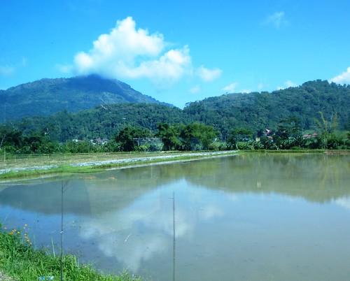 Sulawesi13-Rantepao-Makale (13)
