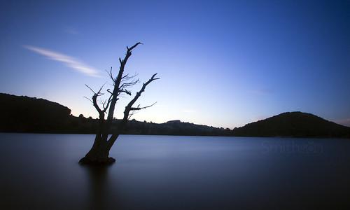 sky lake tree long lakedistrict cumbria ullswater expsoure