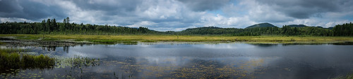 Heron Marsh Panoramic