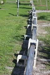 Fences:  They keep us...
