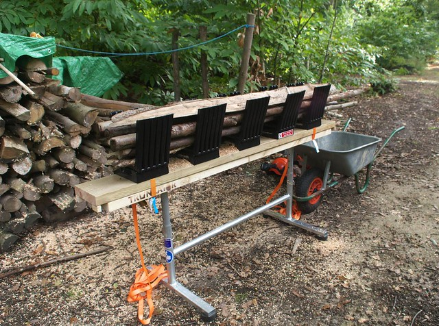DSC_7191 Truncator logging saw bench