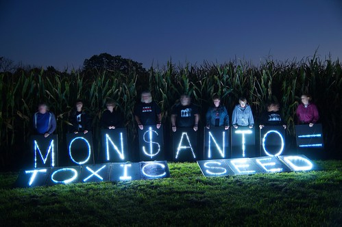 March Against Monsanto Corn Field Action 10/2013