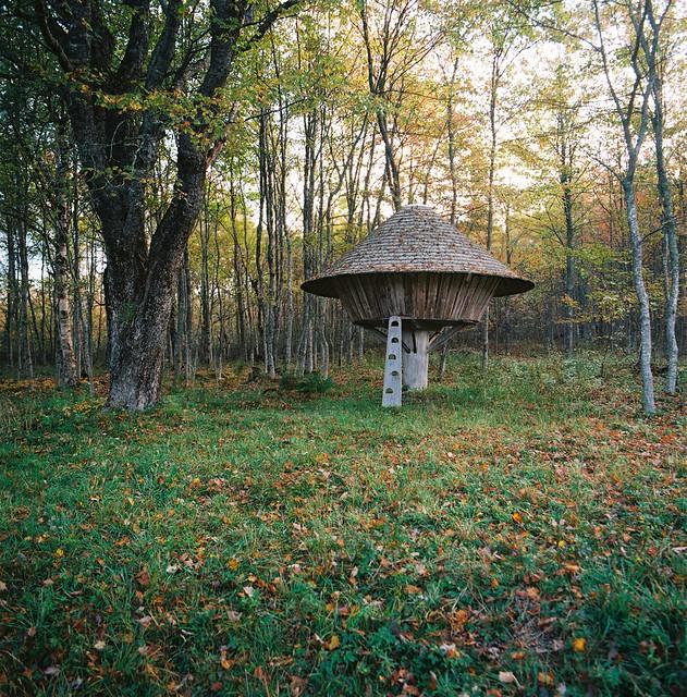 Cache Yurt.