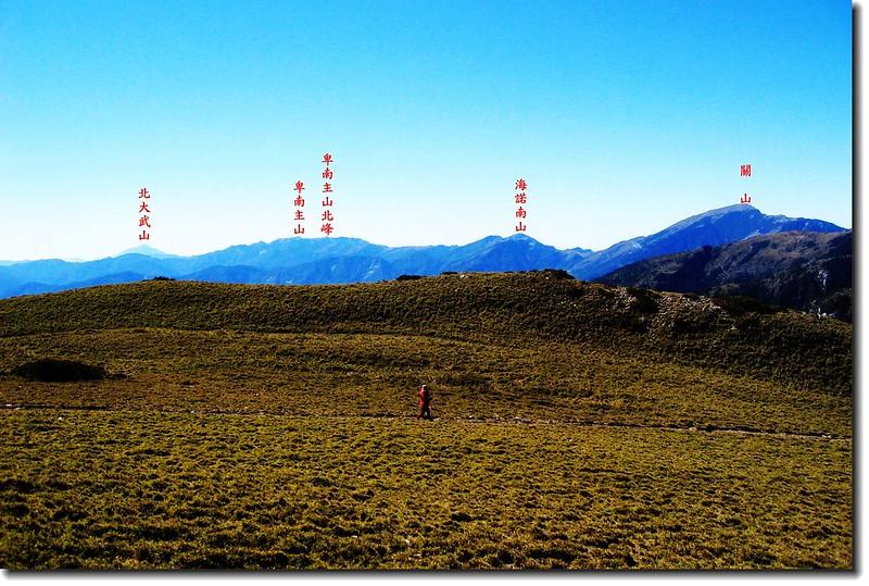 三叉山矮箭竹林(背景為南一段群峰) 2