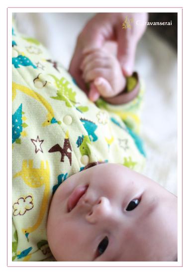 愛知県豊田市,鞍ヶ池公園,屋外,家族写真,ご自宅,お食い初め撮影,赤ちゃん写真,子供写真,ベビーフォト,出張撮影,出張カメラマン