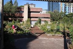 Davie Village Garden