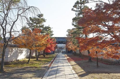 【写真】2013 紅葉 : 妙顕寺/2020-11-01/IMGP4138
