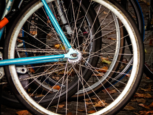 Bike Wheels by garryknight