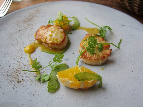 Roast Scallop, Chervil and Miyagawa Satsuma