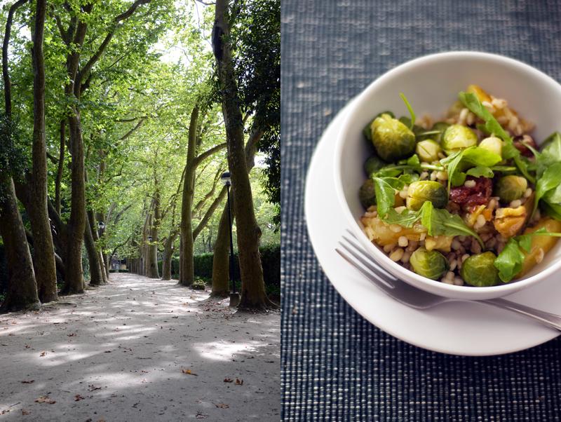 Salada de cevada e couves de Bruxelas